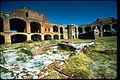 Dry Tortugas National Park DRTO1594.jpg