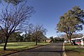 Dubbo NSW 2830, Australia - panoramio (104).jpg