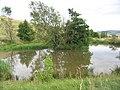 Duck Pond - geograph.org.uk - 220476.jpg