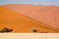 Dune (3688094688).jpg
