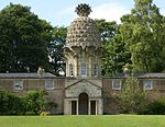 Dunmore Pineapple 20090619 02.jpg