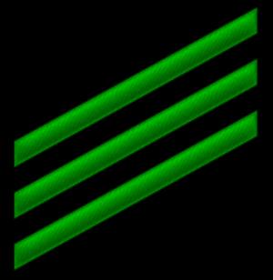 Airman - USN Seaman (E-3) insignia (Airman)