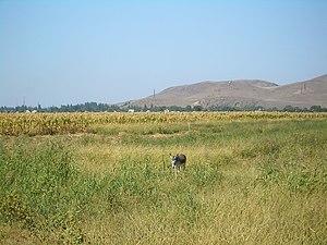 Milyanfan - A view of Milyanfan from the fields west of the village