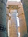 Egypt-3A-061 - Look Up (2216561053).jpg