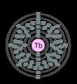 Electron shell 065 terbium.png