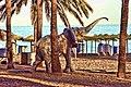 Elefante en playa - panoramio.jpg