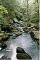Eliza Adams Gorge New Hampshire.jpg