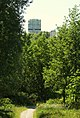Emmerhout (4256775785).jpg