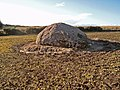 Erratic near the Moyness Cairn (alternate view) - geograph.org.uk - 266421.jpg