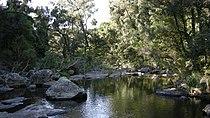 Eungella National Park einalem.jpg