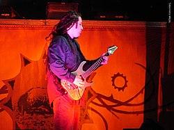 In alto: Terry Balsamo unitosi agli Evanescence nel 2003, dopo l'abbandono di Ben Moody.In basso: Tim McCord, entrato a far parte nella band nel 2006 in sostituzione di Will Boyd.