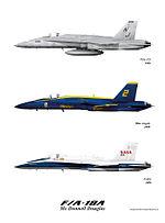 F18Afamilyweb.jpg