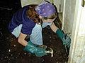 FEMA - 80 - Photograph by Dave Saville taken on 10-06-1999 in North Carolina.jpg