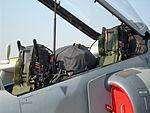 FIDAE 2014 - IA63 Pampa III FAA - DSCN0558 (13496953364).jpg