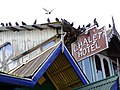 Facade of Chalet Hotel - Darjeeling - West Bengal - India (12407102484).jpg