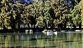 Fairmount park 8 lake evans bridge.jpg