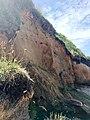 Falaises avec colonie d'hirondelles de rivage-0507.jpg