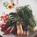 Farm Fresh to You CSA box contents.jpg