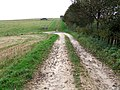 Farm road near Driby - geograph.org.uk - 581378.jpg