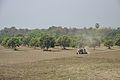 Farming - Indian National Highway 34 - Santipur - Nadia 2013-03-23 7002.JPG