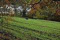 Field at Inchbrook - geograph.org.uk - 1038470.jpg