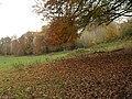Field by Watery Lane - geograph.org.uk - 1045666.jpg
