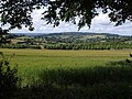 Field on Spoonbed Hill - geograph.org.uk - 876493.jpg