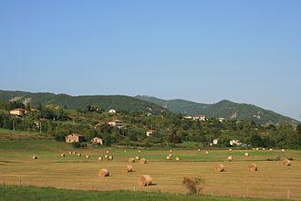 Borgo Val di Taro - Hay prepared for use as winter cattle feed in the fields around Borgotaro.