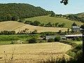 Fields near Glanrafon - geograph.org.uk - 26393.jpg