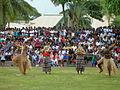 Fiji dancers (7755101148) (2).jpg