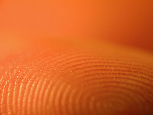 Fingerprints close-up