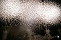 Fireworks in Edogawa, Tokyo; August 2008 (05).jpg