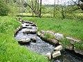 Fischpass am Neckarweg in Rottweil - panoramio (1).jpg