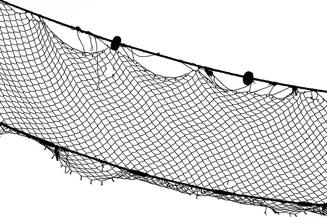 File fishing net wikimedia commons for Fish nets near me