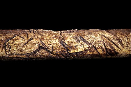 Engraved bone, Magdalenian (17,000 BP to 9,000 BP).