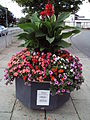 Flowers, Greasby Road 2.JPG