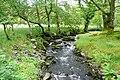 Flowing into Afon Llugwy - geograph.org.uk - 1437182.jpg