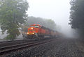 Foggy Coal Train (11222617863).jpg