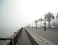 Foggy Day in San Francisco (4425995463).jpg