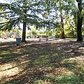 Folsom City Park 826 - panoramio.jpg