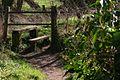 Footpath UK.jpg