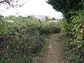 Footpath alongside Little Oreham Farm - geograph.org.uk - 1520188.jpg