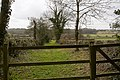 Footpath approaches Bishopsdown Stud Farm - geograph.org.uk - 1774948.jpg