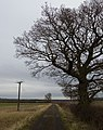 Footpath near Middleton on the Wolds - geograph.org.uk - 1176411.jpg