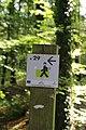 Forêt de Bon-Secours 16.jpg