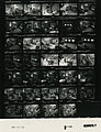 Ford B1106 NLGRF photo contact sheet (1976-08-17)(Gerald Ford Library).jpg
