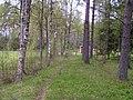 Former trackbed, Bottnaryd - panoramio.jpg