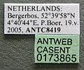 Formica polyctena casent0173865 label 1.jpg