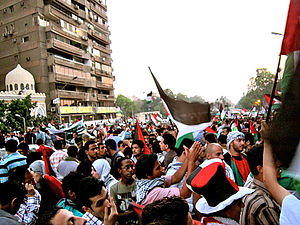 Arab Spring concurrent incidents - Free Palestine rally in Cairo