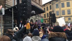 Fil:Fridays for Future Sweden - Concluding speaches and comments.webm